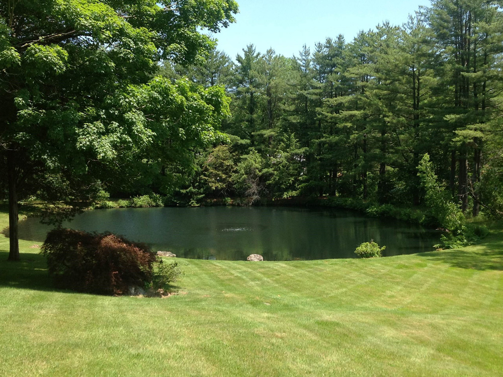 The pond and lake connection pond management for Fish pond management