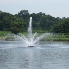 july 07 2011 004