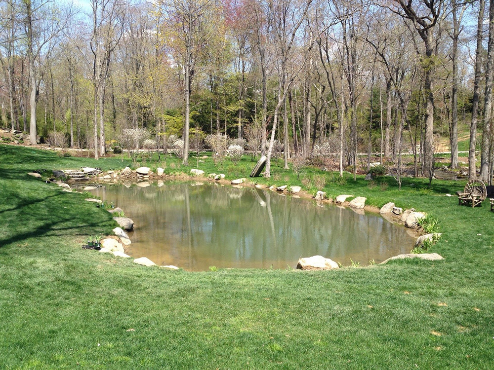 Connecticut Pond Management Maintenance Services In Ny