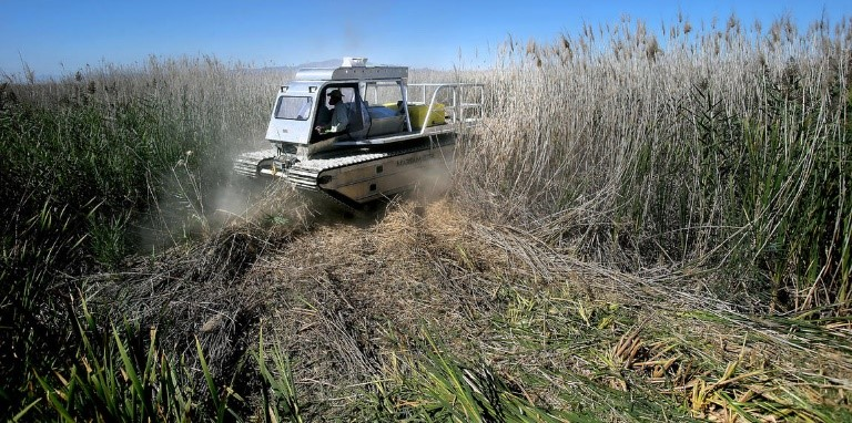 Marsh Master Vehicle