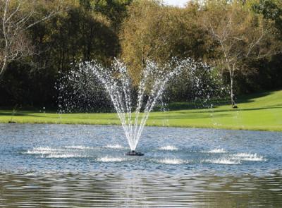 Kasco J Series Decorative Fountain Cypress Nozzle